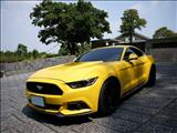 2014 Ford 福特 Mustang